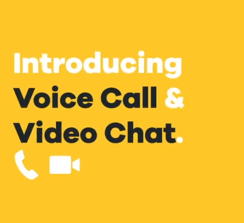 Bumble video chat voice call feature