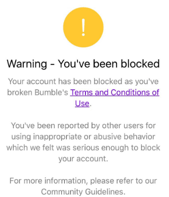 Bumble Account Banned